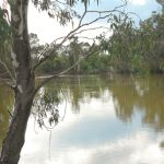 Koondrook - The hidden treasure of the Murray