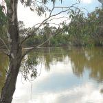 Koondrook - The hidden treasure of the Murray
